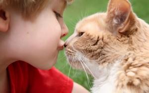 Мальчик целует кошку