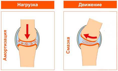 Ставлю противоспалительные а суставы не перестают болеть форум плюсы и минусы криотерапии коленных суставов